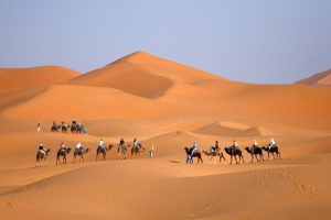 Tour From Marrakech To Sahara Desert in 3 Days