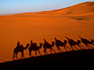 2 días desde Marrakech a Zagora