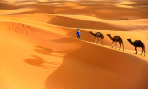 Short tour from Marrakech to Sahara 2 Days