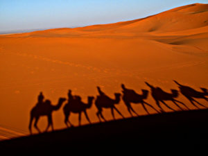 2 días Marrakech a Desierto De Zagora