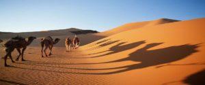 9 Días desde Fes a Marrakech
