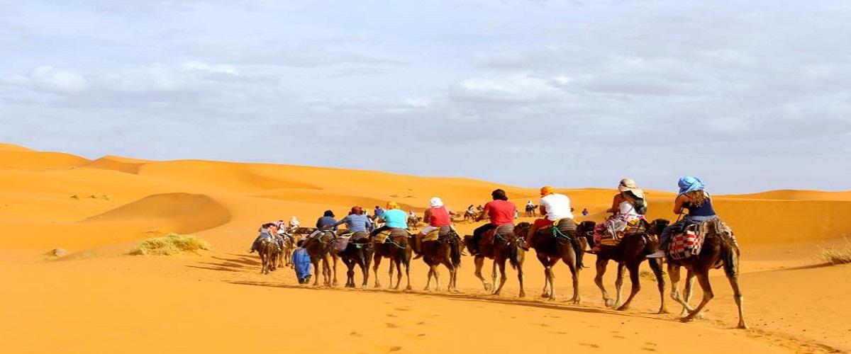 camel ride merzouga dunes