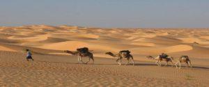 Rutas desde Marrakech|Tour 8 dias al desierto Merzouga