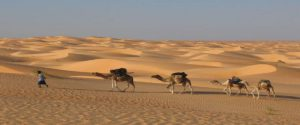 Ruta de 8 dias Marrakech Al Desierto