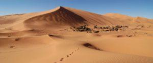 Marrakech a Fez por el Desierto en 3 dias