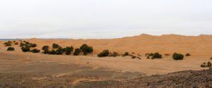4 Dias desde Marrakech al Desierto