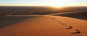 Excursion desde fes al desierto en 2 dias